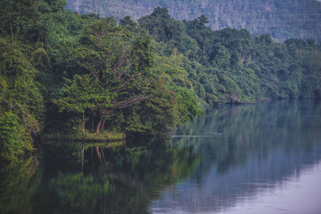 Beautiful Lakes with trees reflec to the water