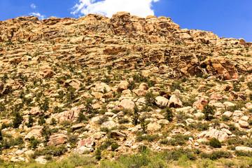 Red Rock Canyon Las Vegas Nevada  -  USA
