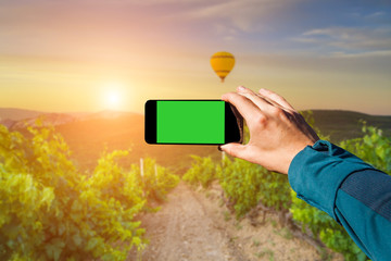 Photographing with smartphone in hand. Travel concept. Sunset on the vineyard