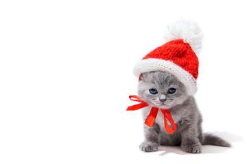 Little british kitten wearing Santa's hat isolated on white background