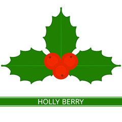Vector illustration of holly berry, isolated on white background. Christmas decoration in flat style.