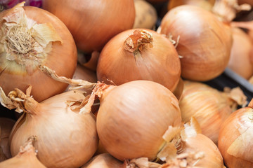 group of onions on the market in Italy