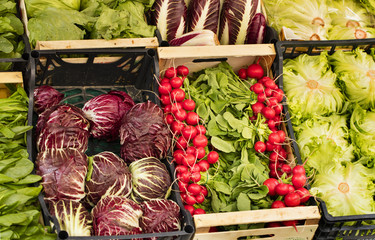 colored vegetables in boxes on the market in Italy