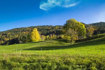 Montagne en automne