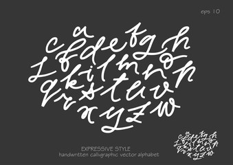 Vector set of lowercase handwritten expressive letters.