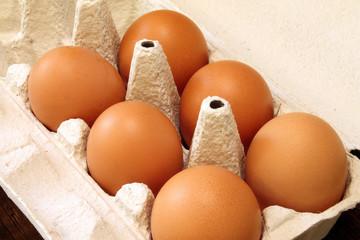 Eggs - Ovum - Egg price change