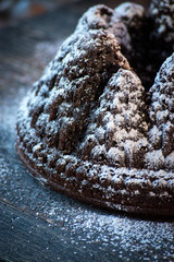 Tree mold chocolate cake with powdered sugar snow