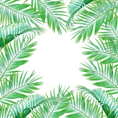 Watercolor frame with leaves of coconut palm tree isolated on white background. Illustration for design of wedding invitations, greeting cards with empty space for text.