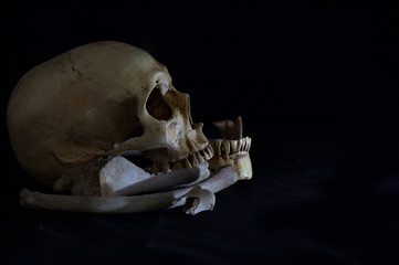 Skull with jaw and pile bones on black background / Still Life image and selective focus.