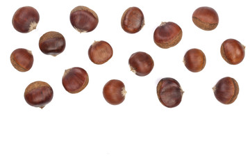 chestnut isolated on white background with copy space for your text. Top view. Flat lay