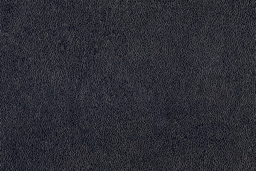 Texture of the black leather (background, abstract)