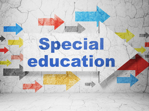 Learning concept:  arrow with Special Education on grunge textured concrete wall background, 3D rendering