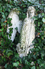 White angel sculpture covered in ivy