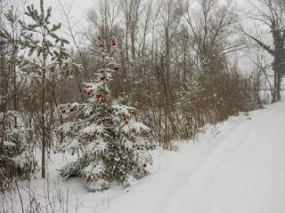 snow covered christmas bulbs hanging outside
