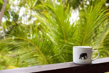 Breakfast in a tropical hotel