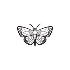 Vector hand drawn butterfly outline doodle icon. Butterfly sketch illustration for print, web, mobile and infographics isolated on white background.