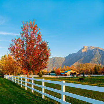 Colorful autumn landscape scene with farm fence and a snowy mountain in the background