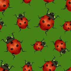 Keuken foto achterwand Lieveheersbeestjes Realistic Detailed Insect Ladybug Seamless Pattern Background. Vector