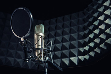 Modern professional microphone in recording studio Wall mural