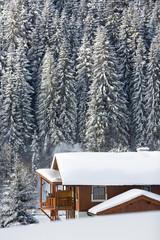 Fototapete - Alpine chalet in Austrian alps