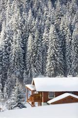 Fototapete - Snowy winter landscape. Alpine chalet in Austrian Alps