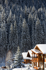 Wall Mural - Alpine chalet in Austrian alps