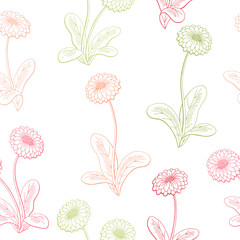 Daisy flower graphic color seamless pattern sketch illustration vector