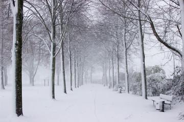 Schnee Alee