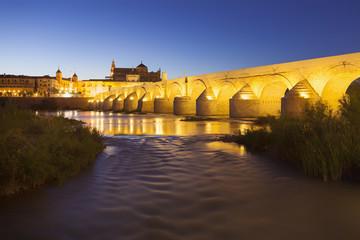 Ancient Roman Bridge of Cordoba, Spain, at night