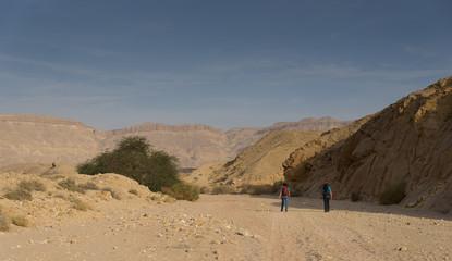 Travel in Israel negev desert landscape