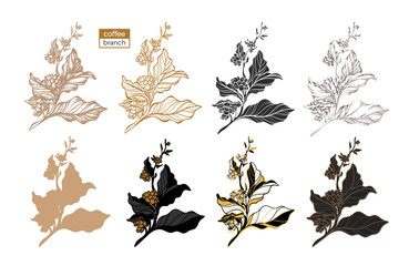 Vector set of coffee tree branch
