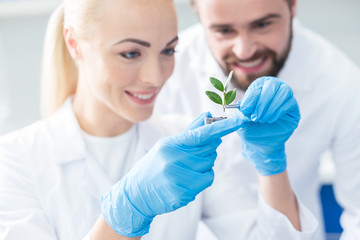 Delighted nice bio scientists looking at the sprout