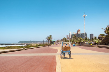 Durban south africa promenade rickschaw