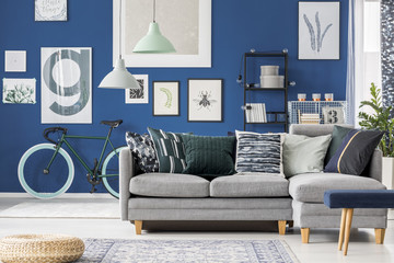 Blue room with bicycle