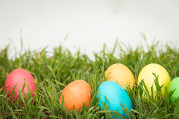 Easter background on grass