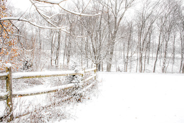 Winter scene with wooden fence