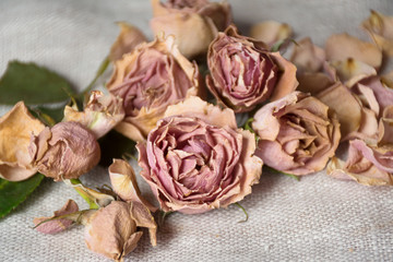 Sweet soft pink color of dried Roses.  Vintage decorations great for home decor