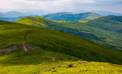 footpath along the Carpathian Dividing Ridge. gorgeous summer landscape with grassy slopes