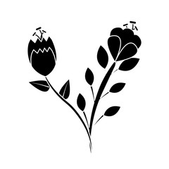 two flowers stem leaves natural petal image vector illustration