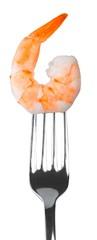 One Shrimp
