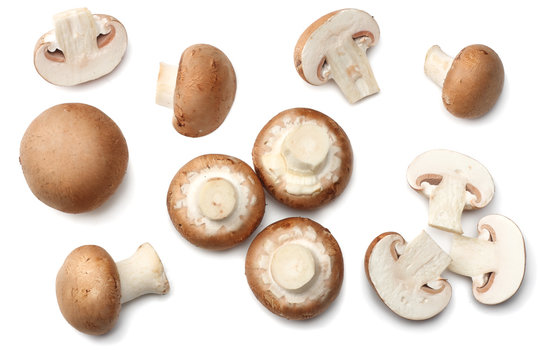 Fresh champignon mushrooms isolated on white background. top view