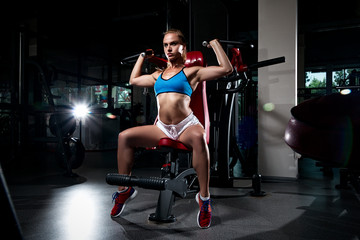 sexy sporty woman doing fitness exercises in gym using training apparatus, sweat girl in sexual clothes. web design banner poster bodybuilder