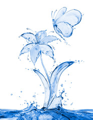Butterfly and flower made of water splashes