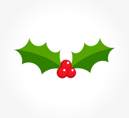Winter berry holly icon