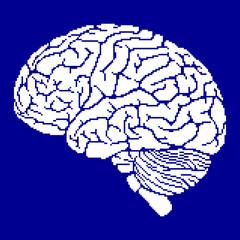 Pixel brain