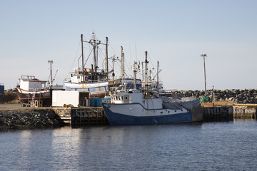 Fishing boats in Bonavista harbor, Newfoundland, Canada