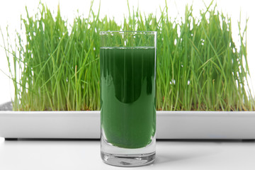 Sprouted wheat grass and shot of healthy juice on white background