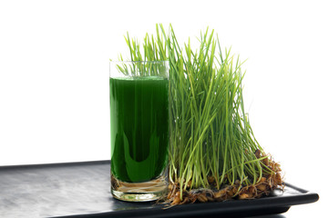 Tray with shot of healthy juice and sprouted wheat grass on white background