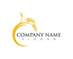 Agriculture wheat Logo Template vector icon design