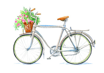 Bicycle and basket with flowers.White background.Watercolor hand drawn illustration.
